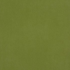 Ткань Penta 13 green