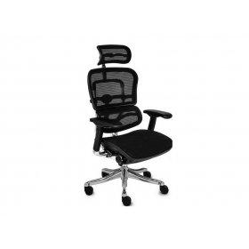 Кресло офисное Ergohuman Plus (EHPE-AB-HAM)