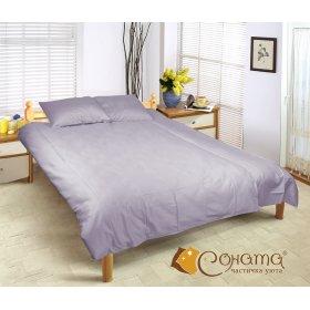 Полуторный комплект постельного белья Пенни
