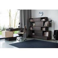 Домашний офис - лаконичное оформление интерьера рабочего места