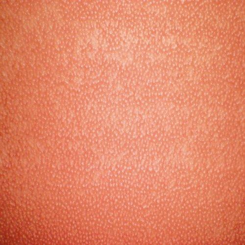 Ткань флок Винтаж coral combin