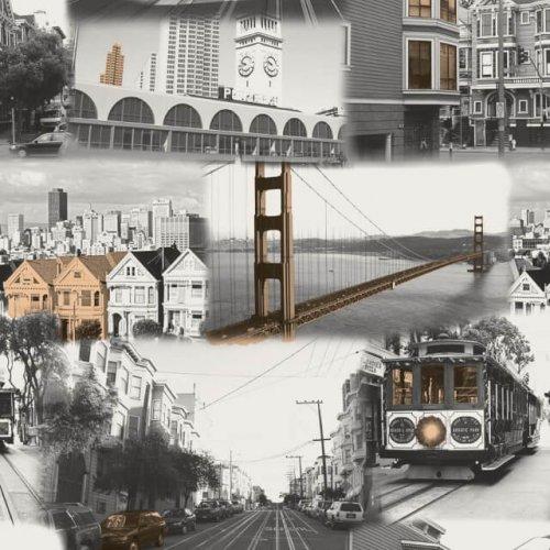 Поликоттон Экожаккард Сан-Франциско
