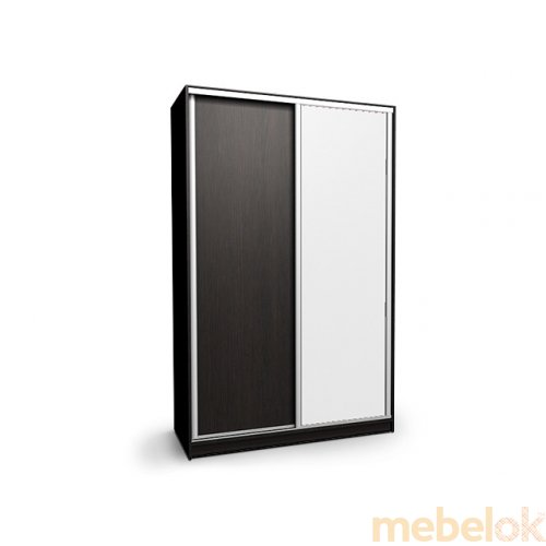 Шкаф-купе 2-х дверный Ника 8