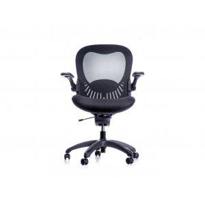 Кресло SPINERGO CLASSIC