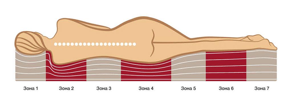 Правильное положение тела на ортопедическом матрасе