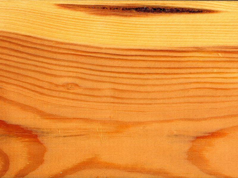 Древесина сосны - фактура