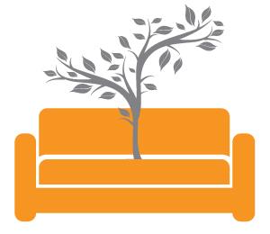 Из дивана выросло дерево