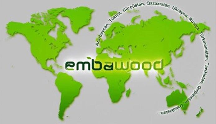 Сфера деятельности компании Эмбавуд